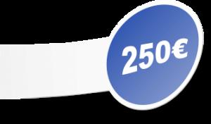 Precio Web Autoadministrable 250€